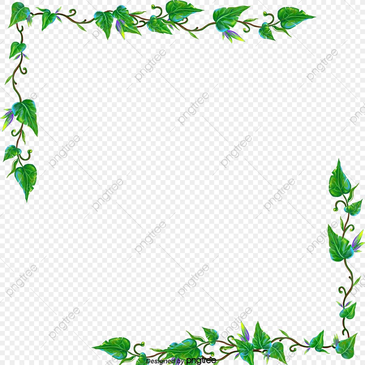 Vines clipart file. Border vine green flower