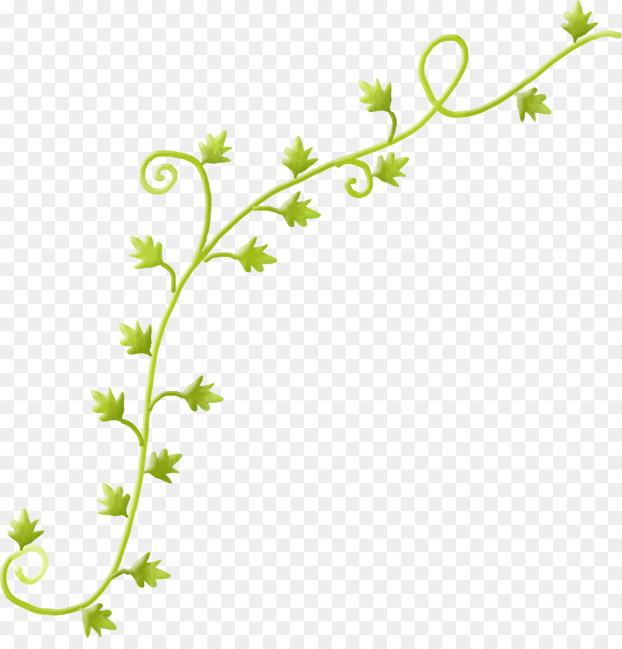 Vines clipart grass. Green background png download
