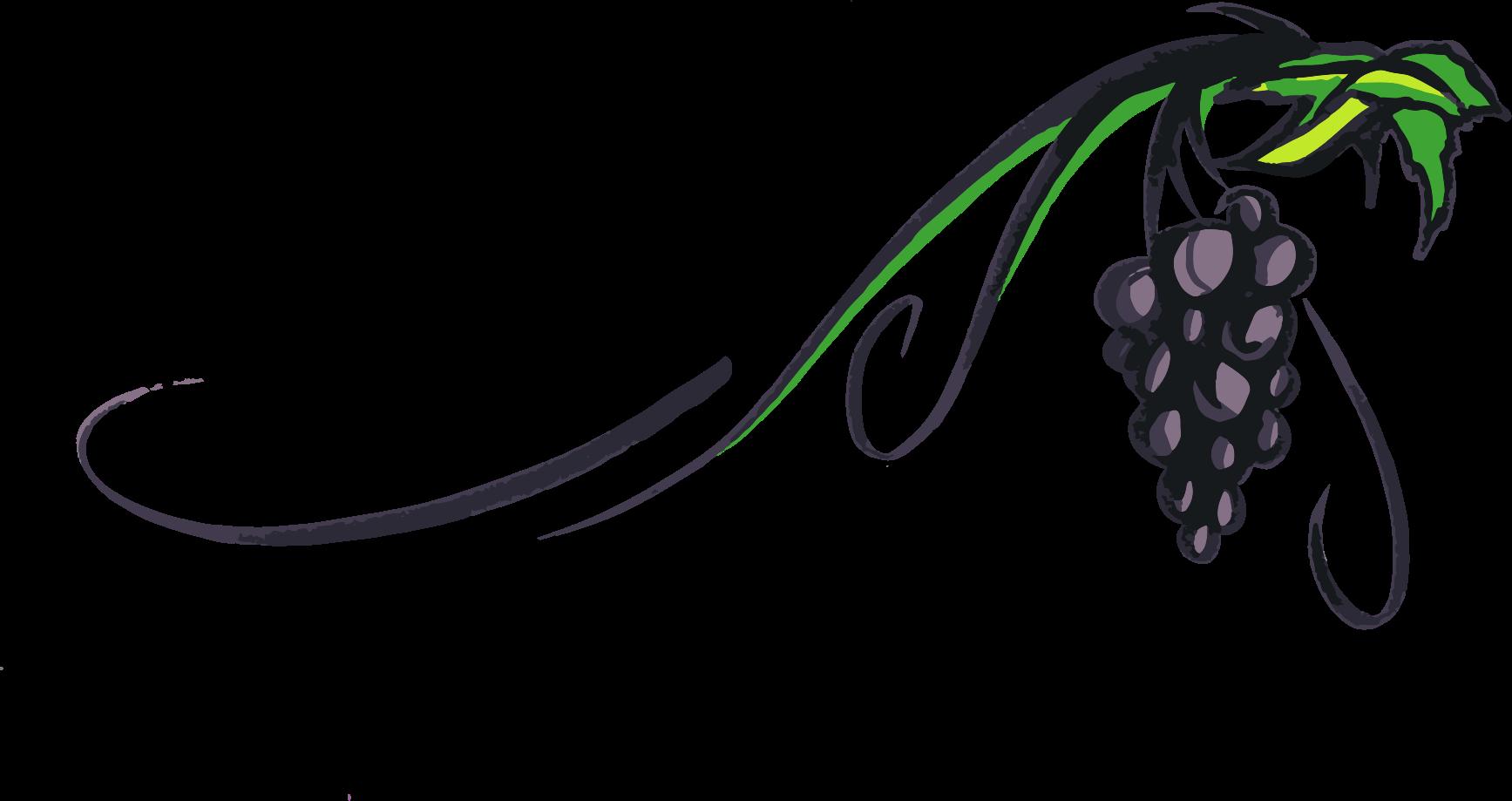 Raseone grape vine by. Vines clipart hand drawn