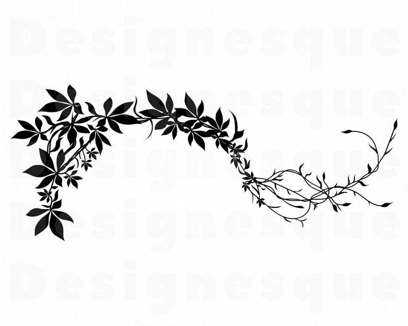 Vines clipart svg. Jungle vine decorative files
