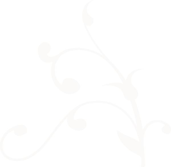 Vines clipart vector. Swirl vine frames illustrations