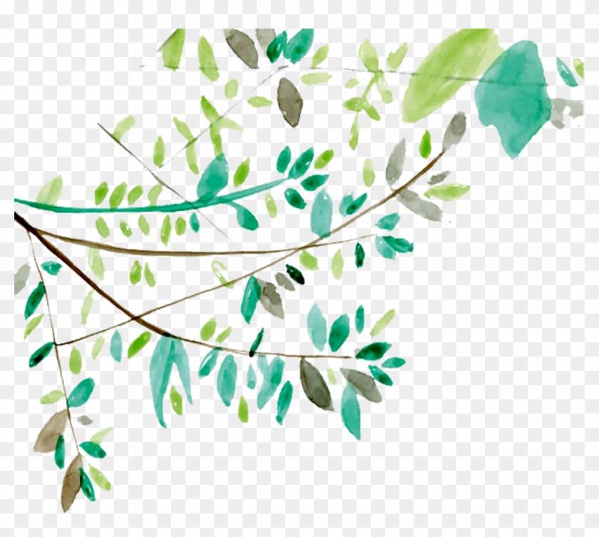 Tree branches with leaves. Vines clipart watercolor
