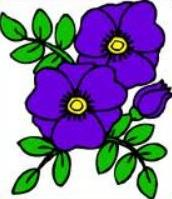 Free. Violet clipart