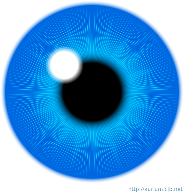 Vision clipart human eye. Blue iris panda free