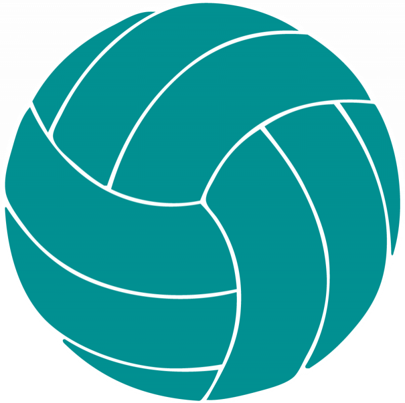 Free redskins hanslodge clip. Volleyball clipart animated