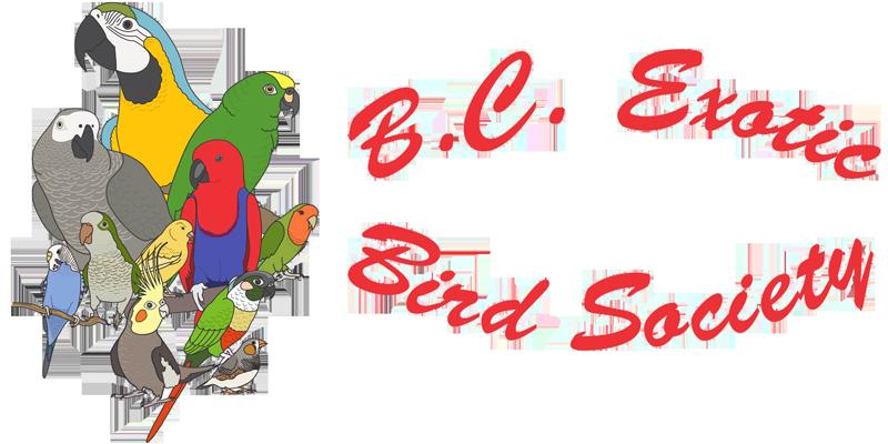 Bc exotic bird society. Volunteering clipart non profit