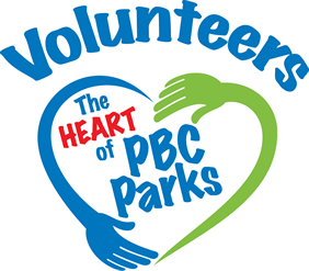 Parks volunteer . Volunteering clipart recreation center