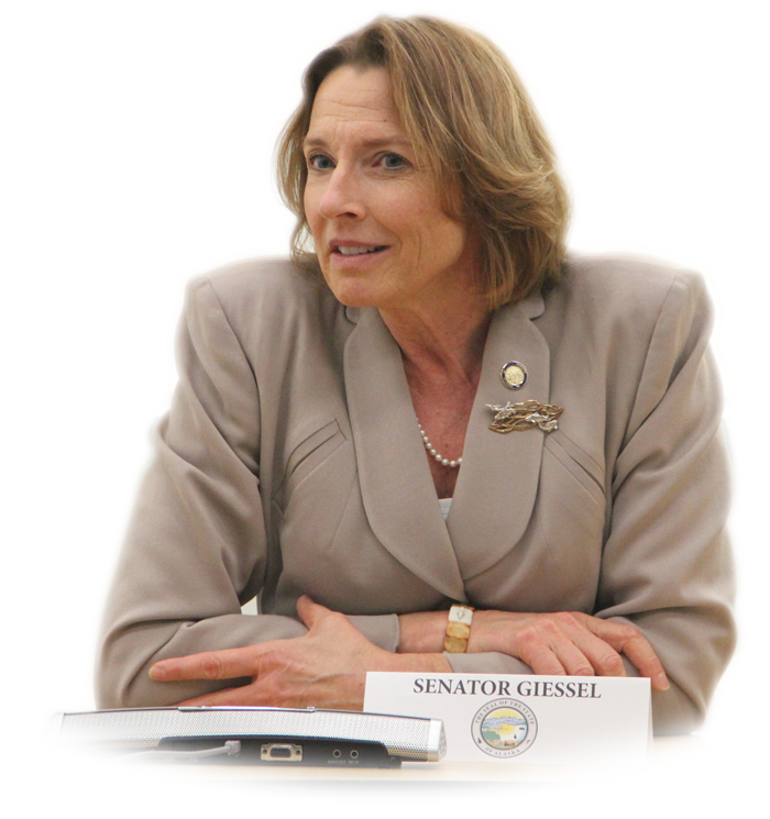 Alaska senate majority cathy. Voting clipart senator