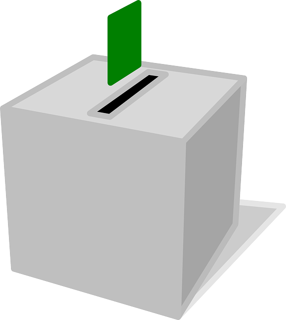 Cosmic rays did not. Voting clipart voting machine