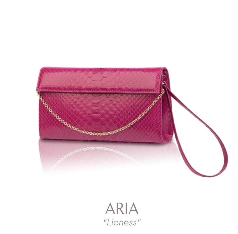 Vana experience the soul. Wallet clipart ladies wallet