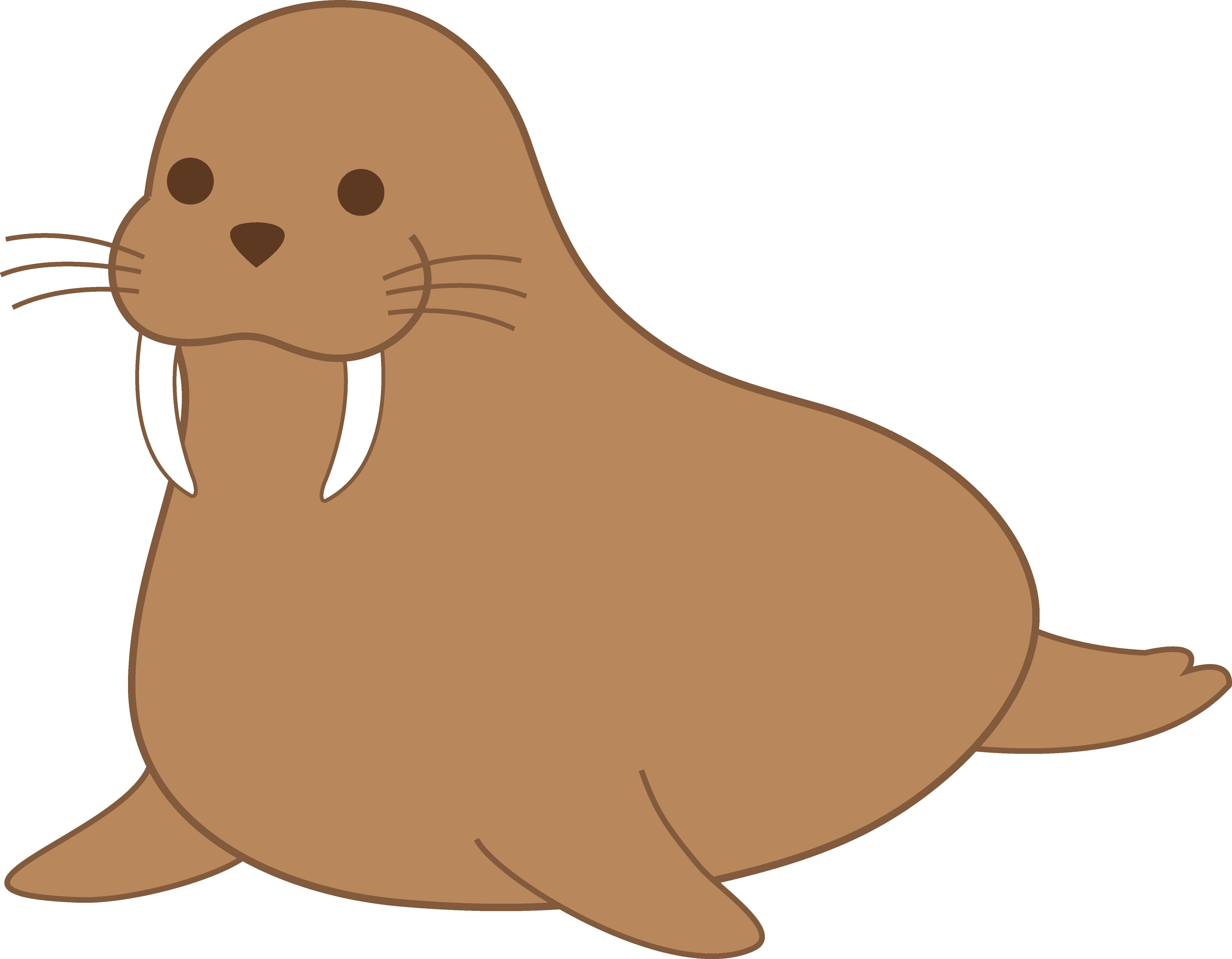 Walrus clipart. Chubby brown clip art