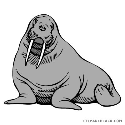 Page of clipartblack com. Walrus clipart