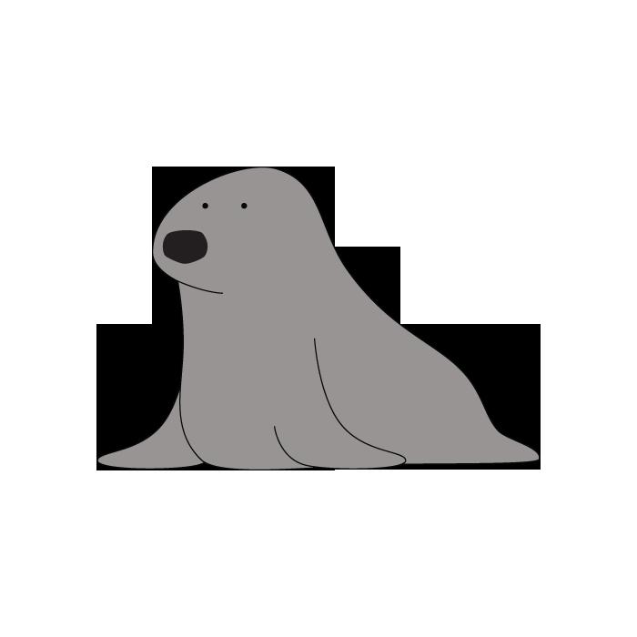 Walrus clipart animal sea nz. Animals the kingdom seal