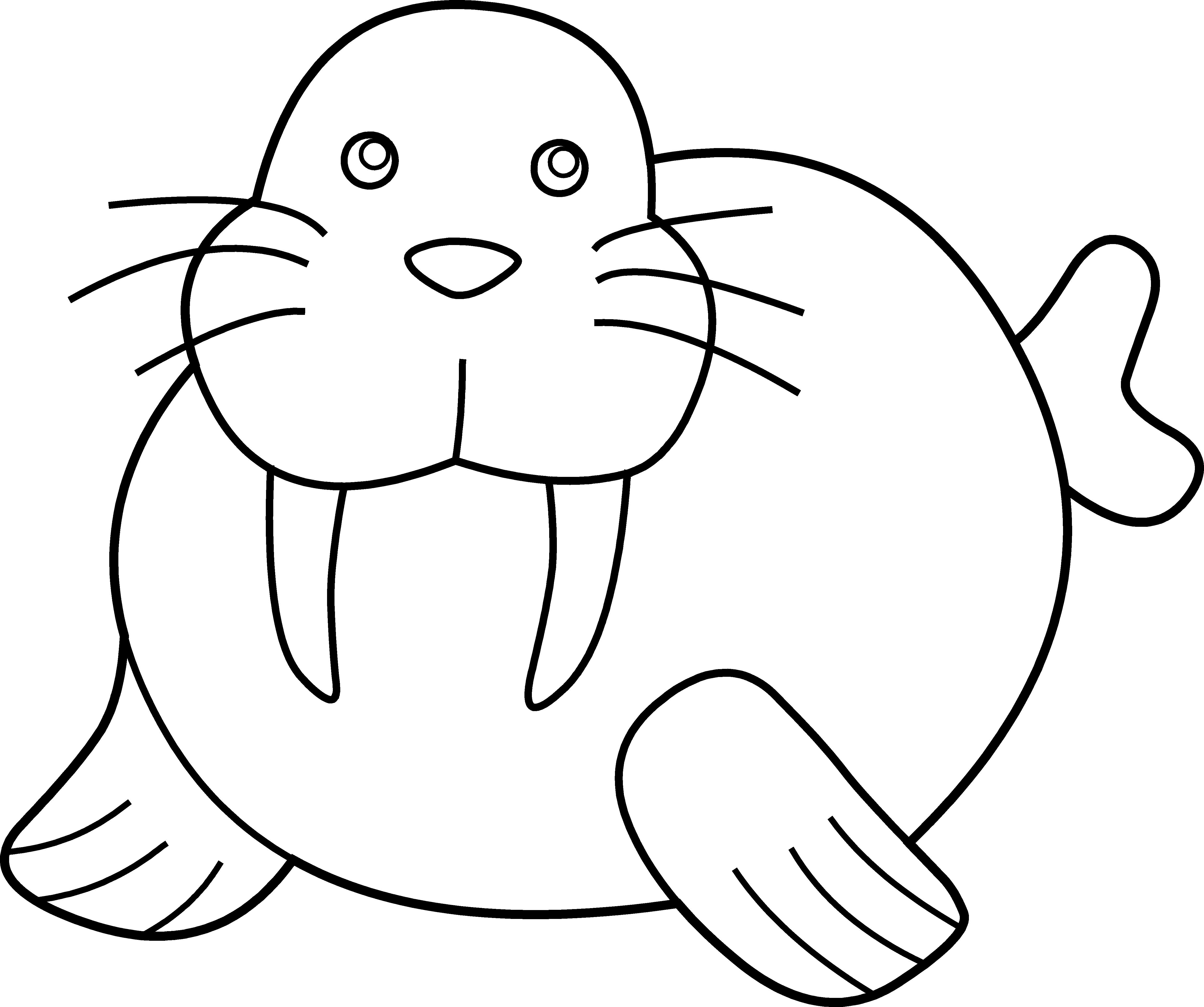 Best of letters format. Walrus clipart black and white