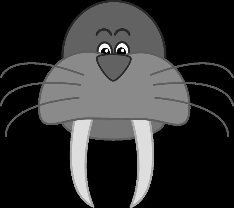 Clipartblack com animal free. Walrus clipart black and white