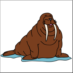 Clip art cartoon i. Walrus clipart color