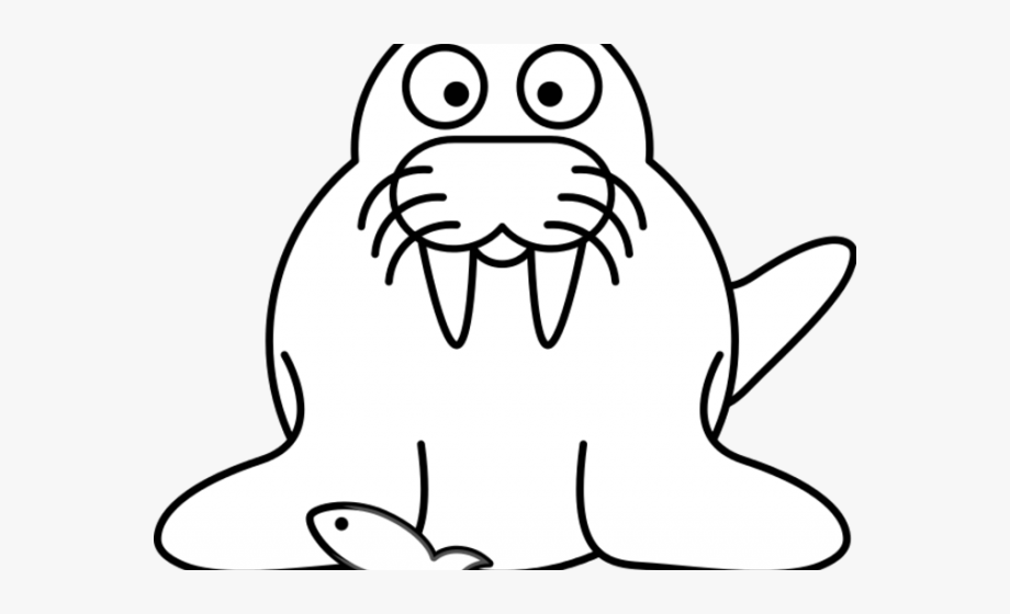 Walrus clipart object. Pie outline cliparts cartoons