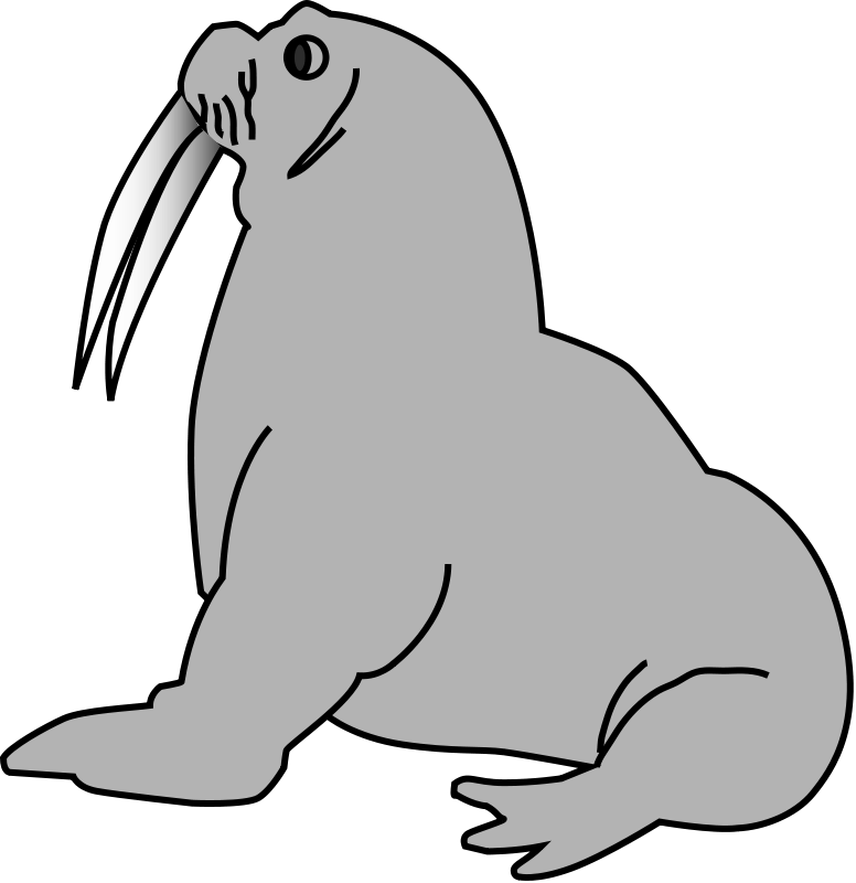 Walrus clipart outline. Gray free collection download