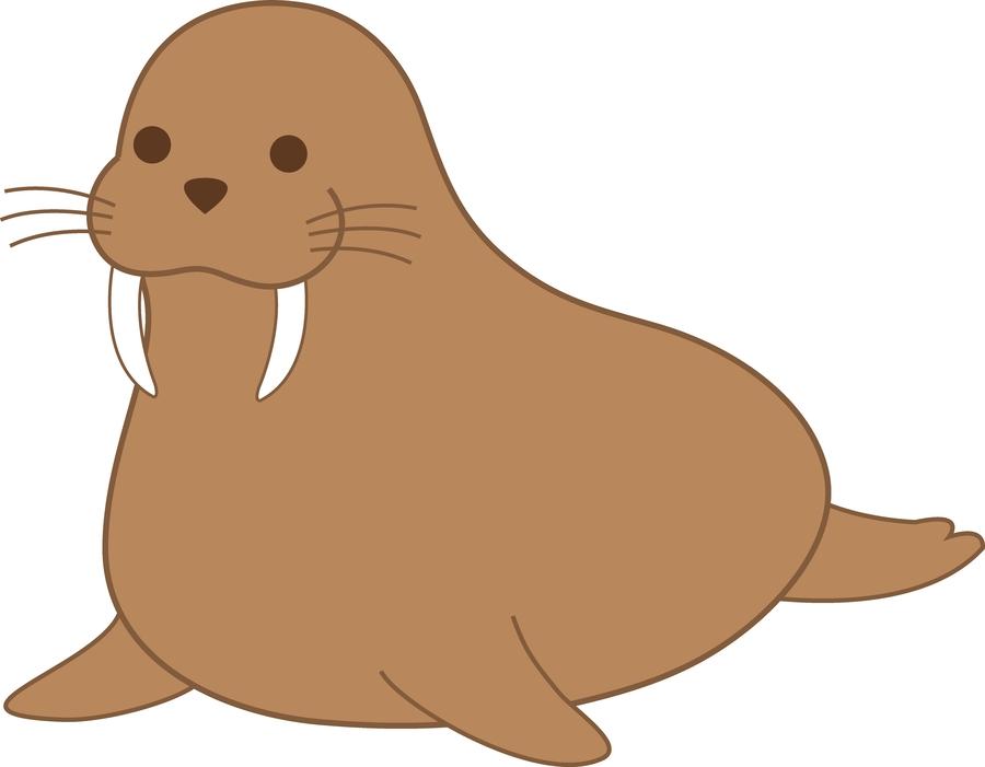 Walrus clipart sea lion. Download clip art
