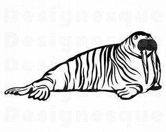 Walrus clipart svg. Etsy