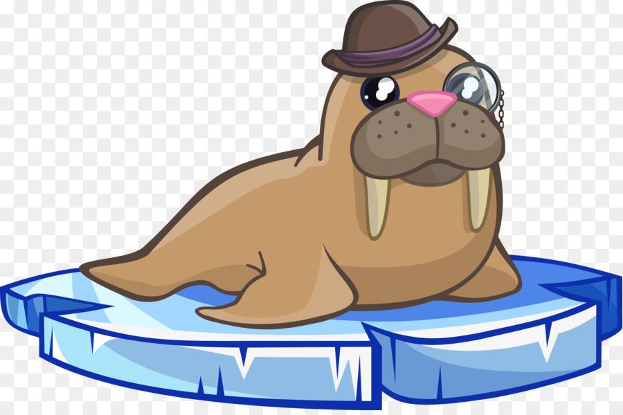 Walrus clipart transparent. Snout png download free
