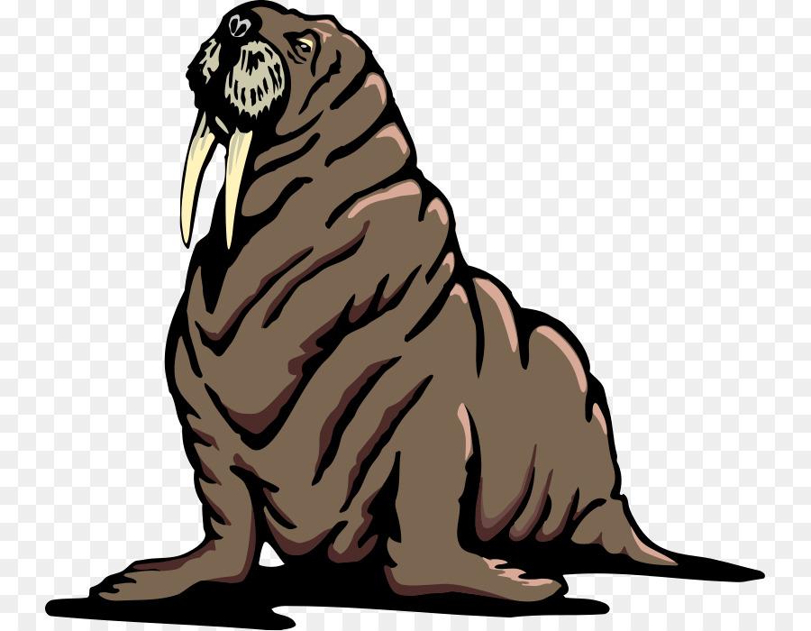 Bear cartoon png download. Walrus clipart transparent