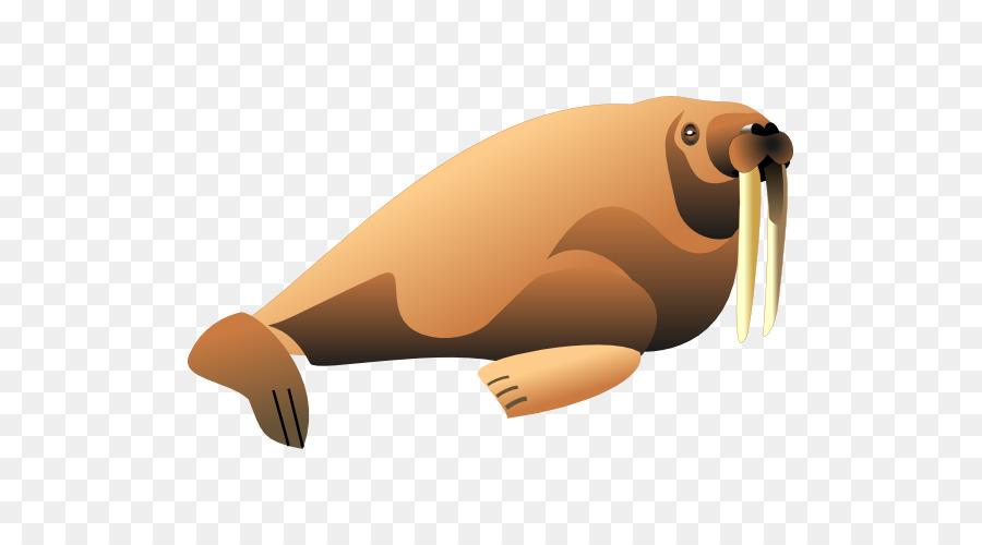 Walrus clipart transparent. Penguin cartoon png download