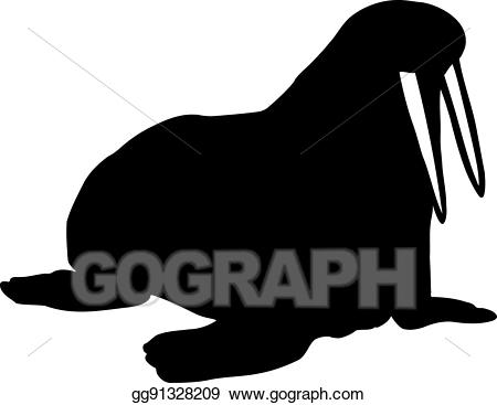 Walrus clipart tusk. Eps illustration with big