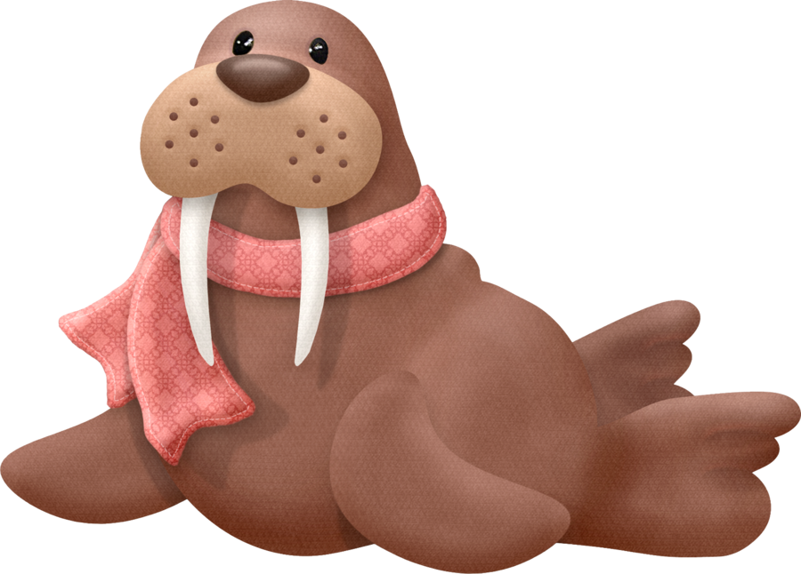 Clip art cute animals. Walrus clipart winter