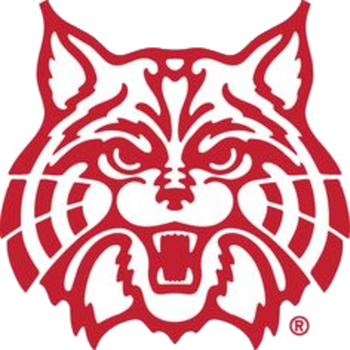 The lake view wildcats. Wildcat clipart whitney