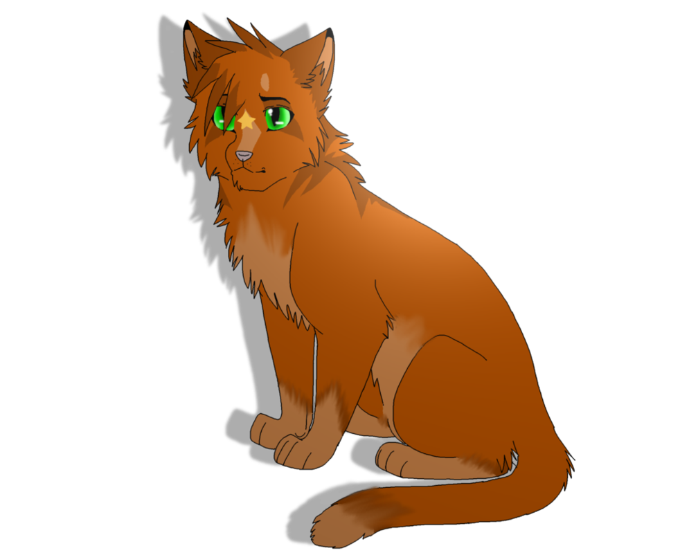 Warrior clipart orange. Which cat character are