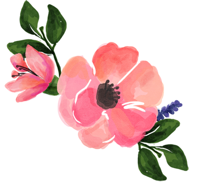 pink for free. Water color flower png
