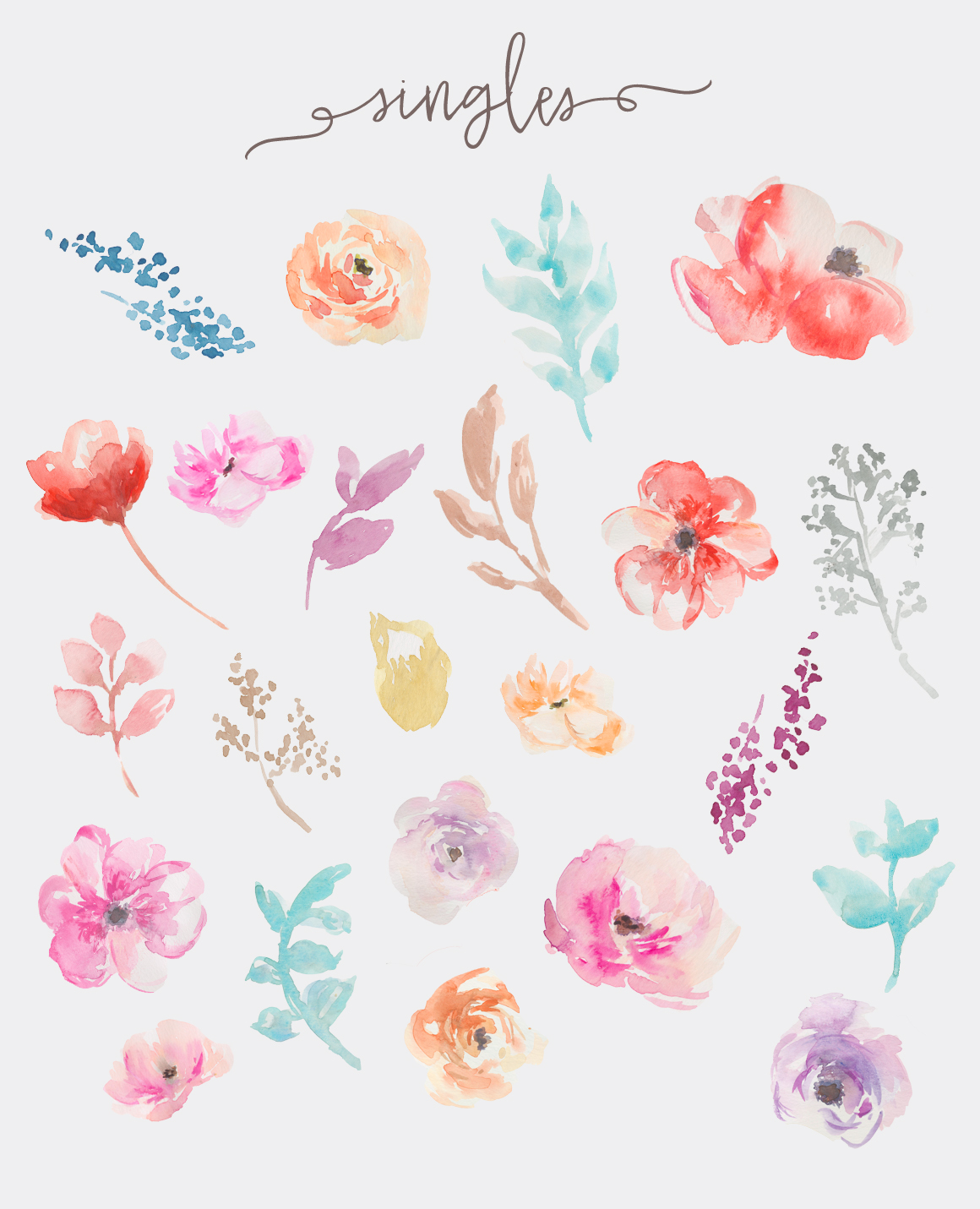 Flowers clip art by. Watercolor clipart