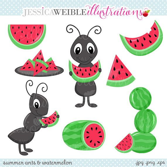 Watermelon clipart ant. Summer ants and cute