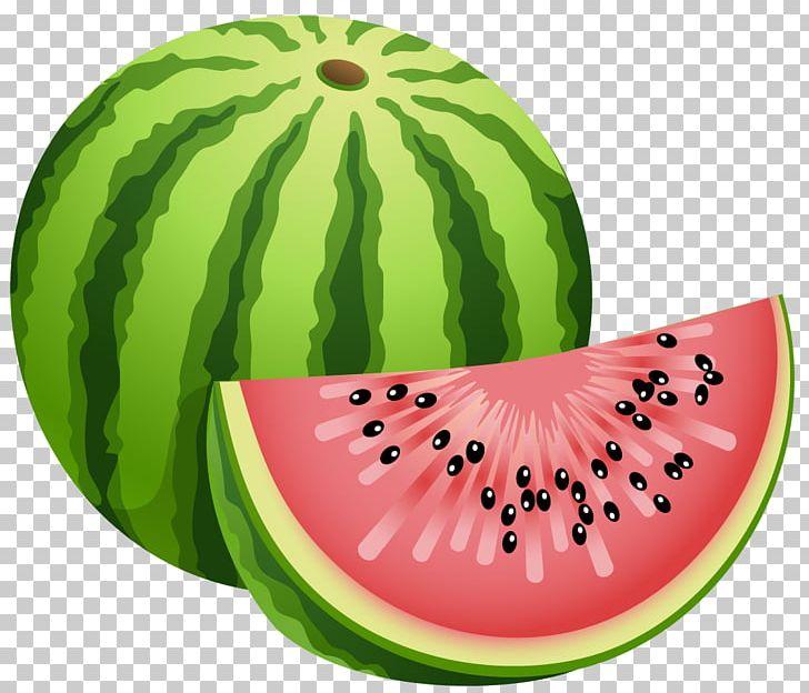 Fruit png cantaloupe citrullus. Watermelon clipart cucumber melon