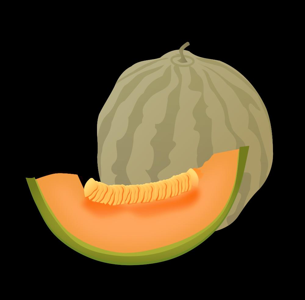 Melon png alternative design. Watermelon clipart cupcake