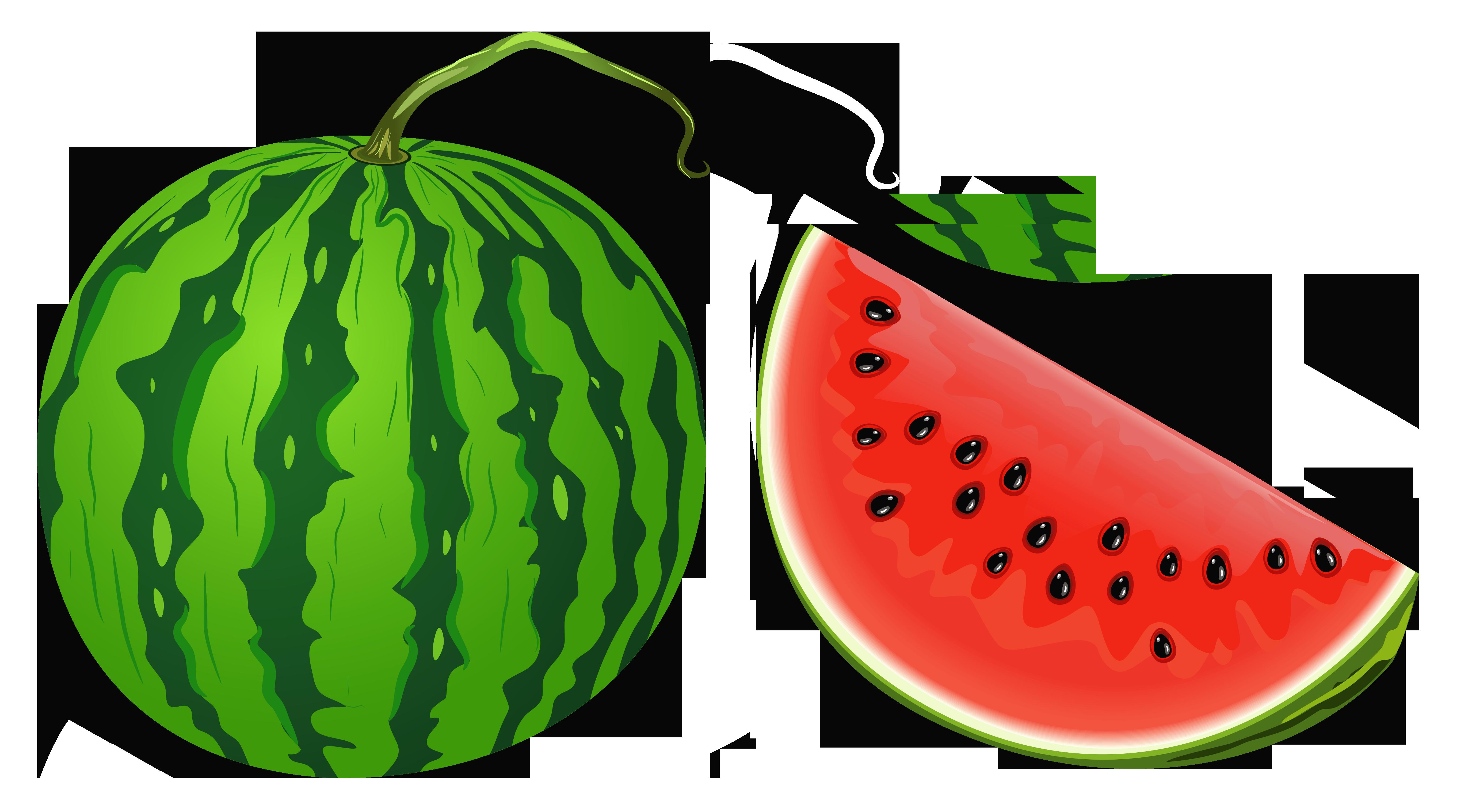 Watermelon clipart different fruit. Clip art melon png