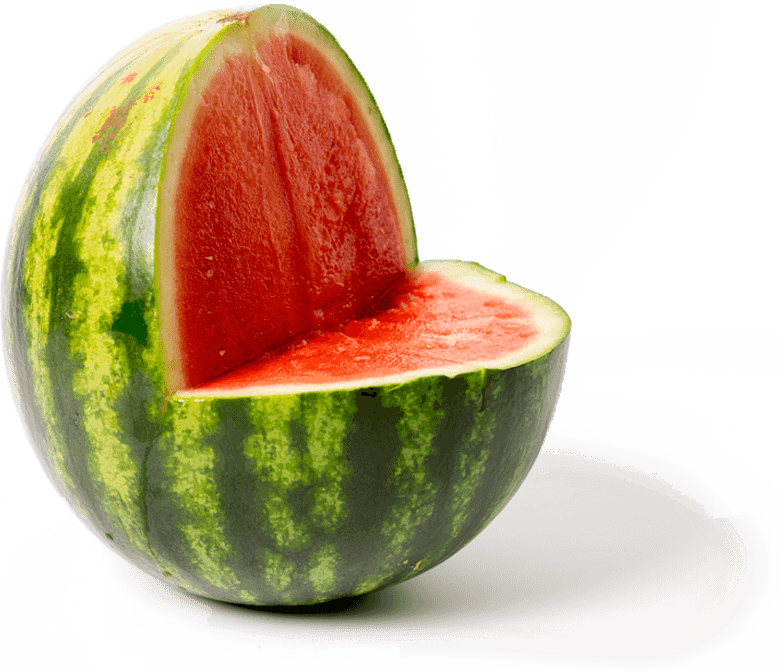 Watermelon clipart easy. Save the food home