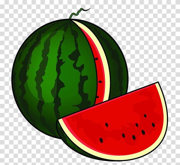 Watermelon clipart garden. Drawing cartoon transparent