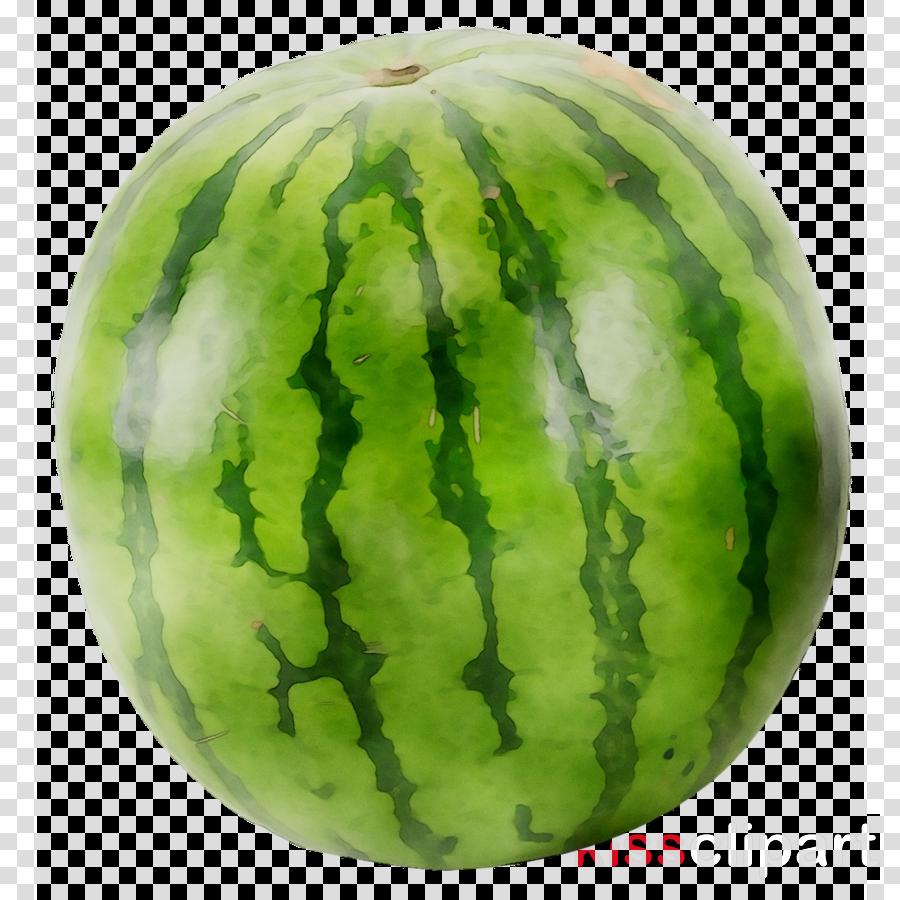 Watermelon clipart green squash. Background fruit