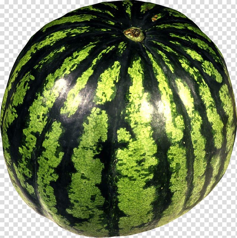 Watermelon clipart green squash. Juice transparent background png