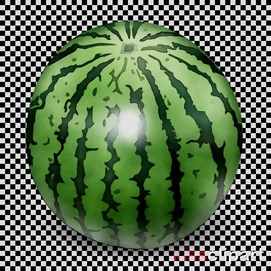 Cartoon fruit . Watermelon clipart green squash
