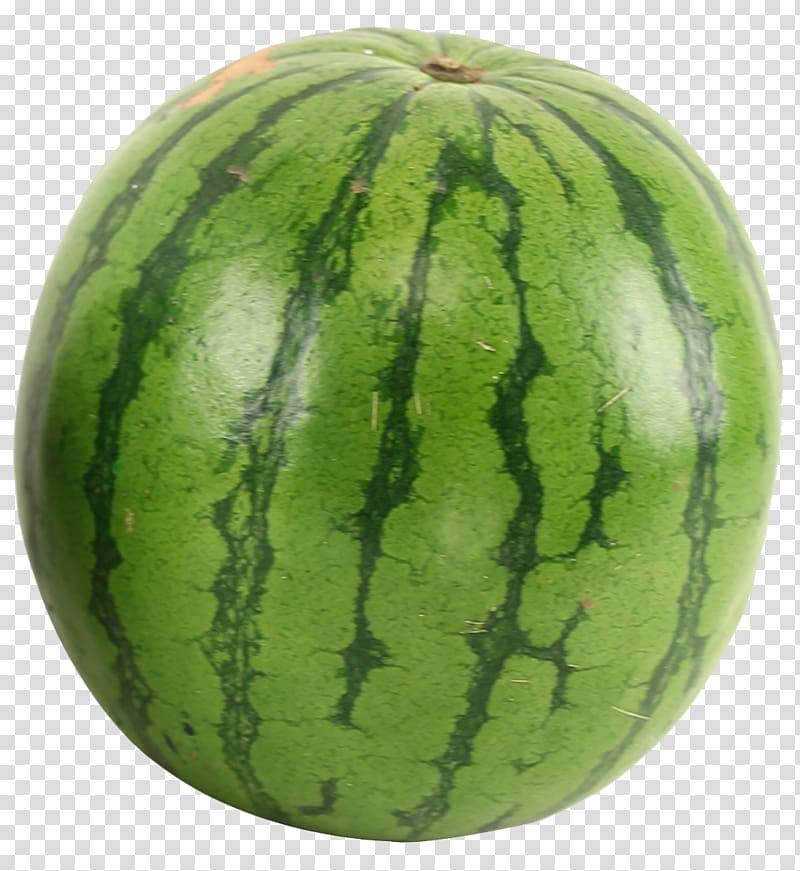 Watermelon clipart green watermelon. Juice muay thai