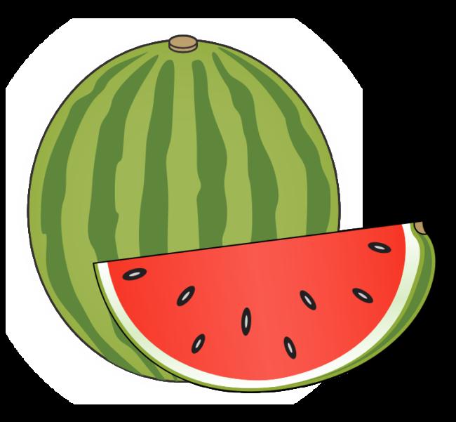 collection of melon. Watermelon clipart muskmelon