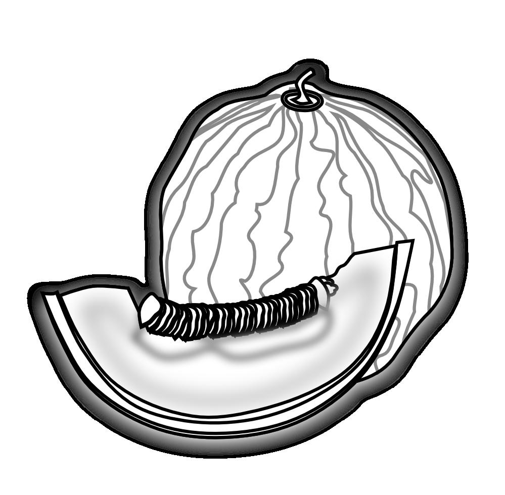 Watermelon clipart muskmelon. Clipartist net clip art