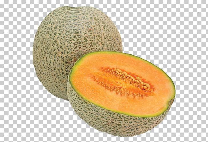 Cantaloupe dried fruit png. Watermelon clipart muskmelon