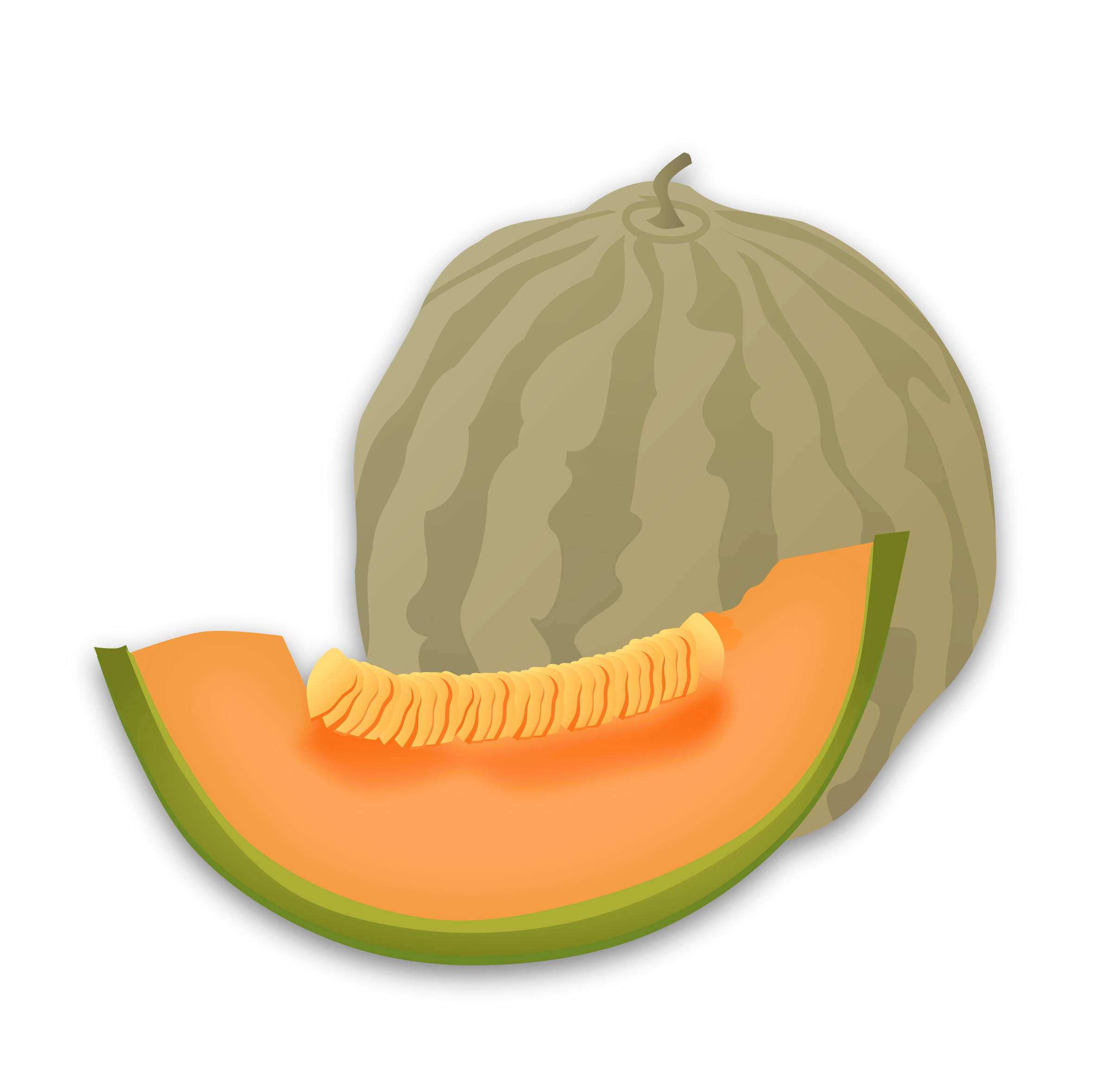 Musk melon big image. Watermelon clipart muskmelon