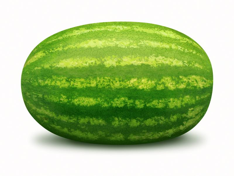 Thibodauxpd . Watermelon clipart oblong