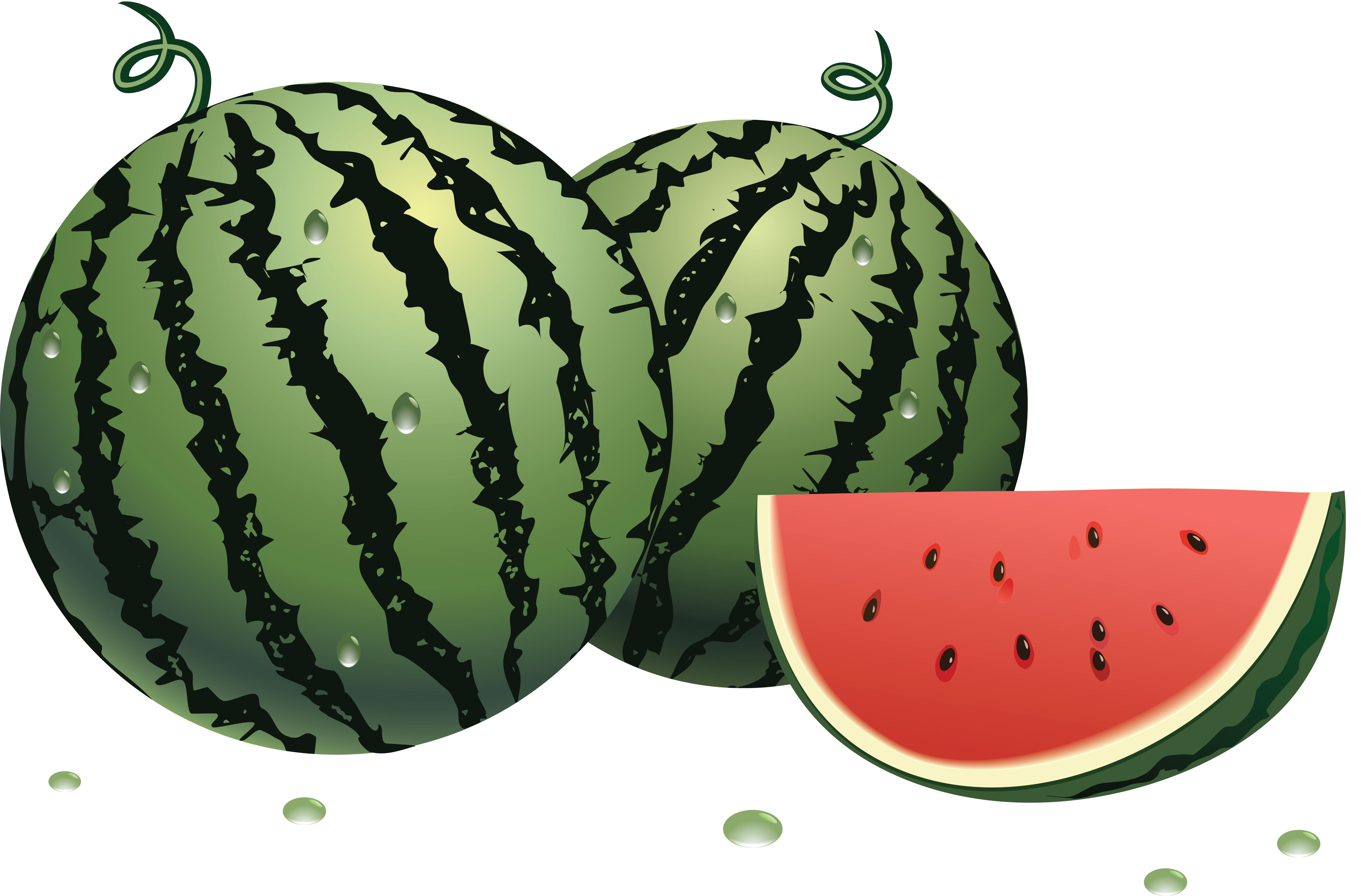 Free image clip art. Watermelon clipart single fruit