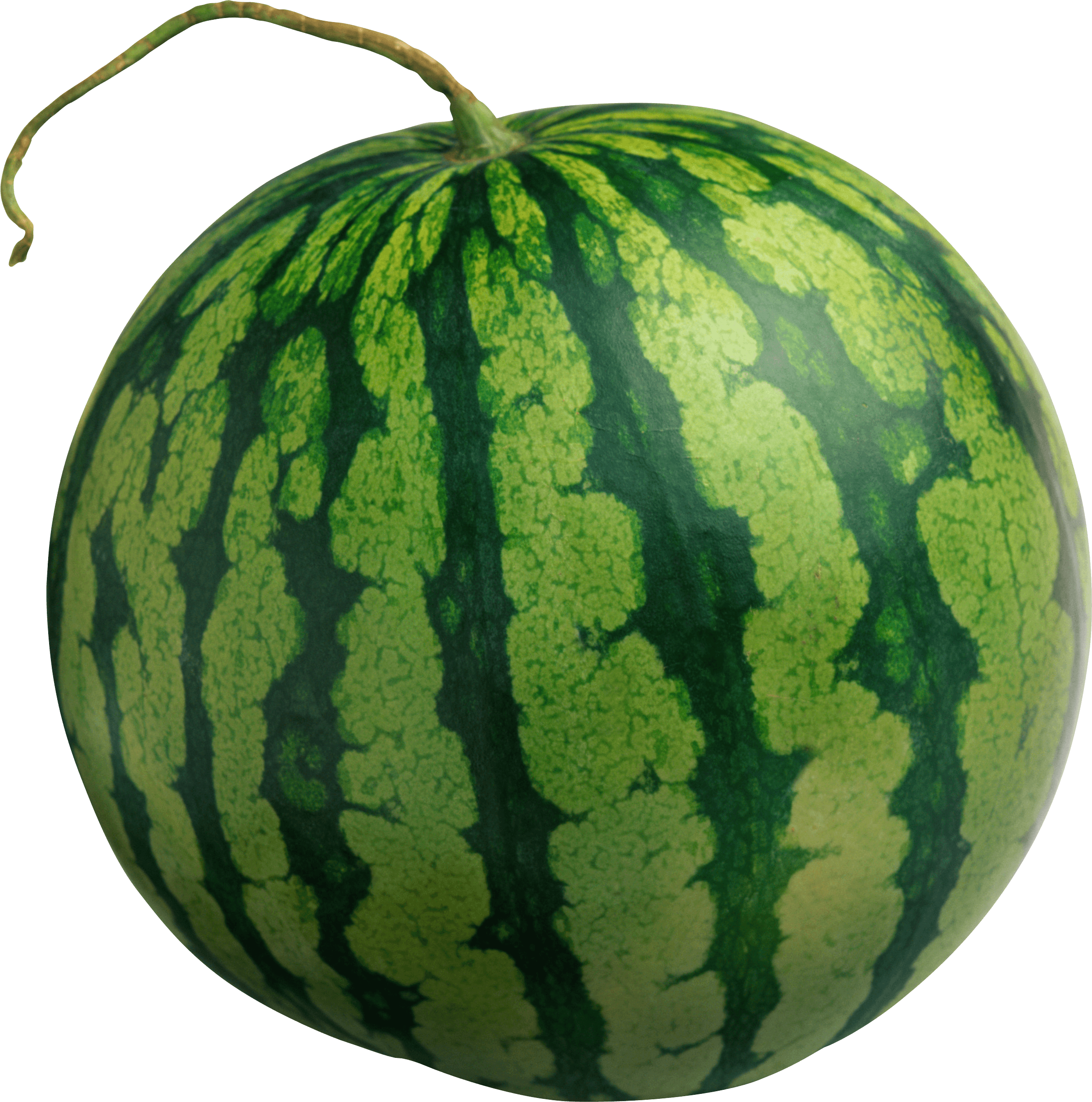 Watermelon clipart transparent background. Large isolated png stickpng